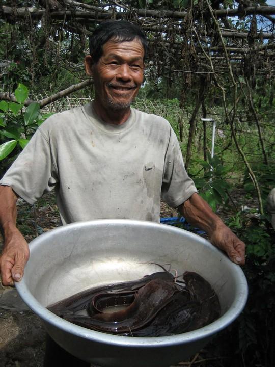 """Cá Trê Suối Phú Quốc: Đặc sản """"độc"""" của Đảo Ngọc - Ảnh 7."""