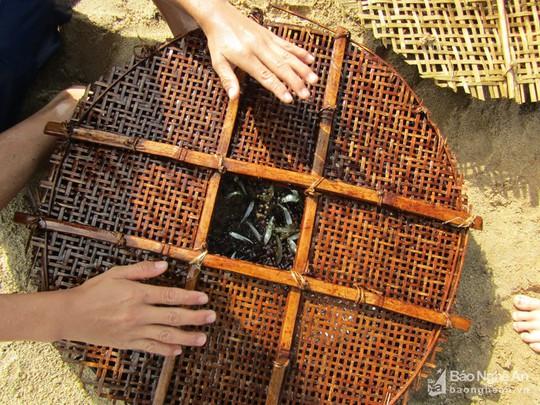 Chiêu độc săn cá suối của trẻ em vùng cao Nghệ An - Ảnh 6.