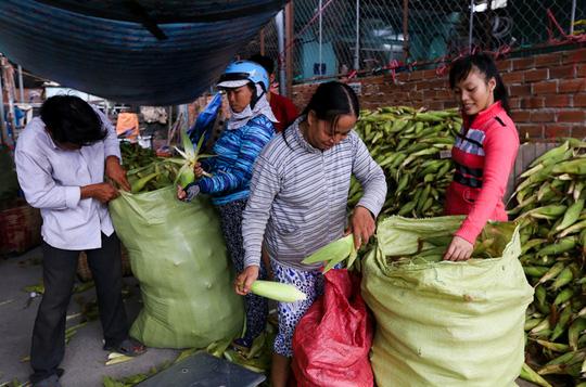 Chợ bắp lớn nhất Sài Gòn - Ảnh 6.