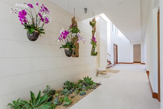 Xu hướng tạo vườn trong nhà trong thiết kế nhà ở - Ảnh 6.