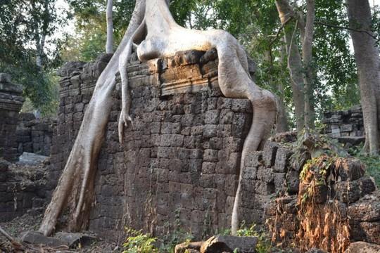 Ngôi đền bí ẩn lâu đời hơn cả Angkor Wat ở Campuchia - Ảnh 7.