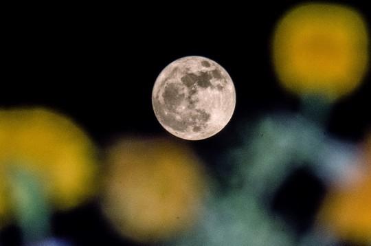 Hình ảnh siêu trăng 2017 trên bầu trời các nước - Ảnh 6.