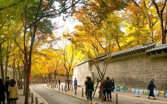 Con đường dính lời nguyền chia tay người yêu ở Hàn Quốc - Ảnh 7.
