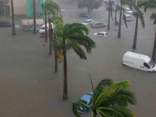 Nhiều xe chìm trong nước lũ. Ảnh: Splash News
