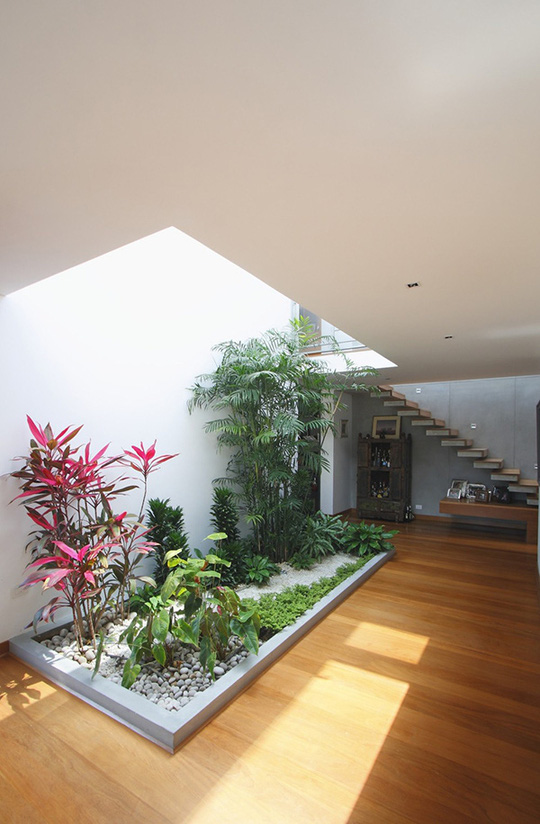 Xu hướng tạo vườn trong nhà trong thiết kế nhà ở - Ảnh 7.