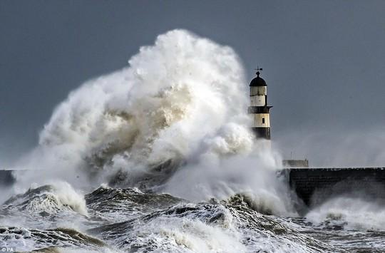 Choáng ngợp với những con sóng khổng lồ tuyệt đẹp nhưng cũng đầy hăm dọa - Ảnh 7.