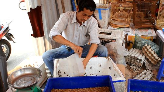 Ngày nào cũng vậy, chợ bắt đầu họp từ lúc 8h sáng đến 19h mỗi ngày nhưng đông nhất là vào thứ 7 và chủ nhật.