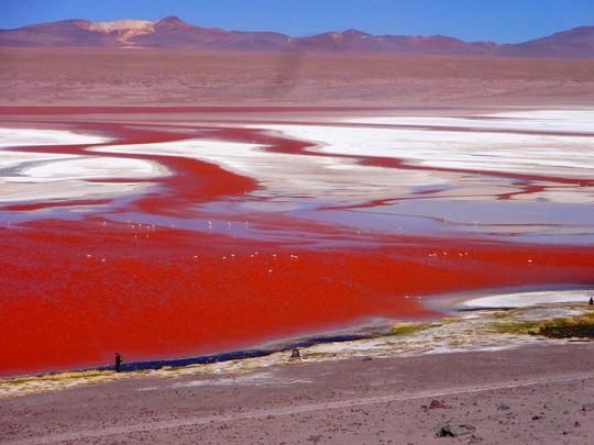 Những hồ nước kỳ lạ trên thế giới - Ảnh 8.