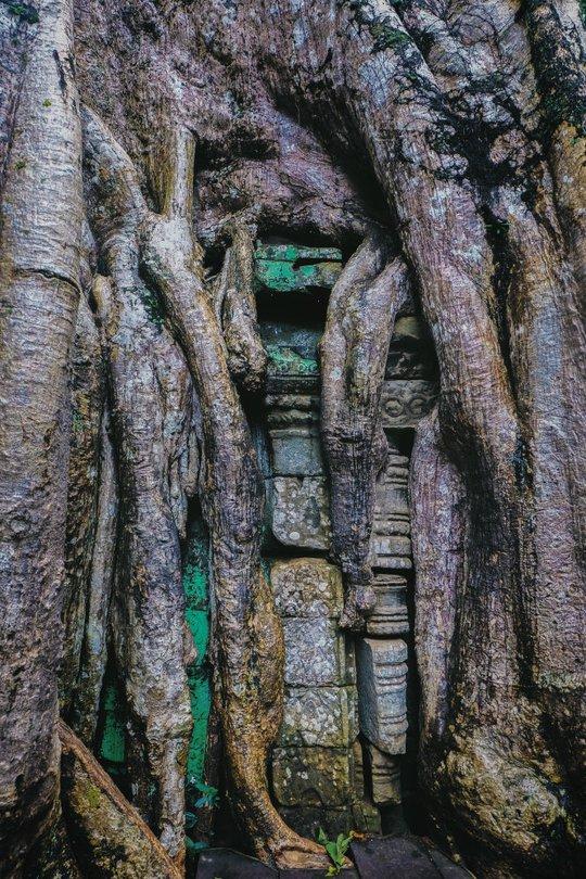Ta Prohm - ngôi đền của những rễ cây kỳ dị - Ảnh 8.