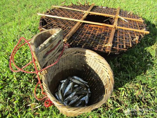 Chiêu độc săn cá suối của trẻ em vùng cao Nghệ An - Ảnh 8.