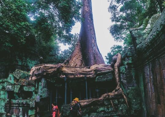 Ta Prohm - ngôi đền của những rễ cây kỳ dị - Ảnh 9.