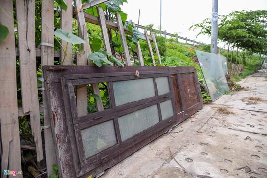 Kiểu trồng rau có 1 không 2 của người Hà Nội - Ảnh 10.