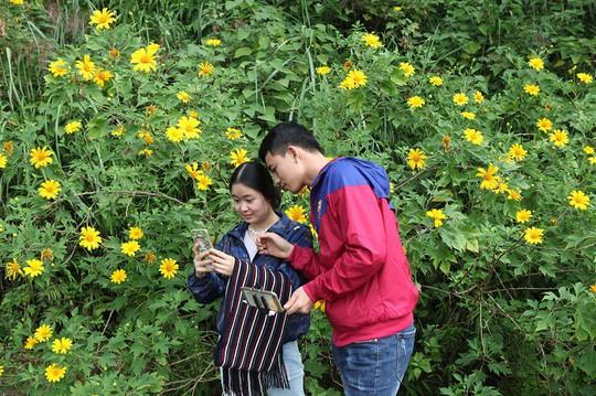 Đẹp nao lòng rừng hoa dã quỳ dưới chân núi Tản - Ảnh 10.