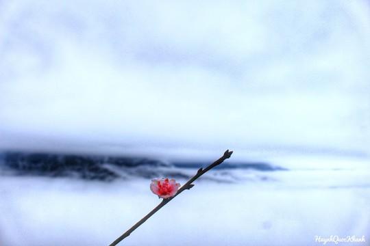 Biển mây Tà Xùa, chuyến đi Tây Bắc cho 2 ngày cuối tuần - Ảnh 10.