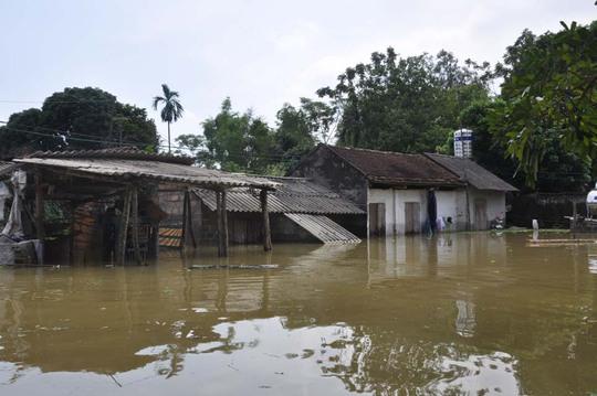 3 xã vùng đê vỡ của Hà Nội vẫn chìm trong nước - Ảnh 1.