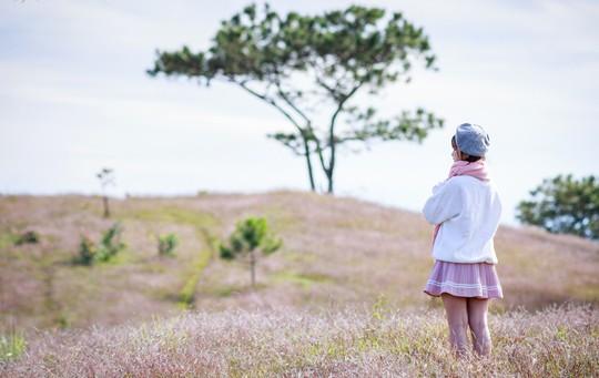 Ma mị cỏ hồng trong sương sớm Đà Lạt - Ảnh 5.