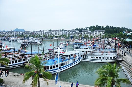 Âu cảng Tuần Châu