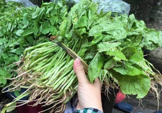 Mưa ngập đồng, giá rau xanh tại chợ Hà Nội tăng mạnh - Ảnh 2.