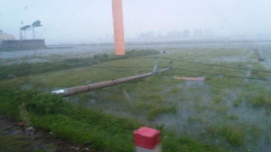 Bão số 10: Cuồng phong quét qua, nhà tốc mái, cây đổ la liệt - Ảnh 3.