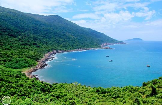 Kiến nghị không quy hoạch Sơn Trà thành khu du lịch quốc gia - Ảnh 1.