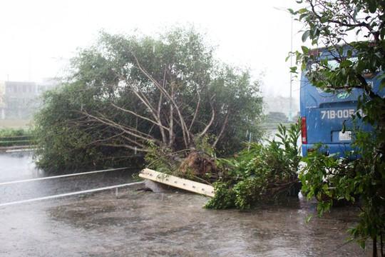 Phú Yên ách tắc, 6 người chết, mất tích vì bão số 12 - Ảnh 4.