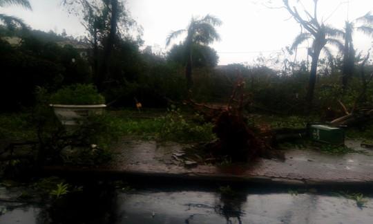 Phú Yên ách tắc, 6 người chết, mất tích vì bão số 12 - Ảnh 13.