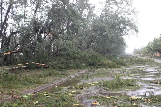 Phú Yên ách tắc, 6 người chết, mất tích vì bão số 12 - Ảnh 2.