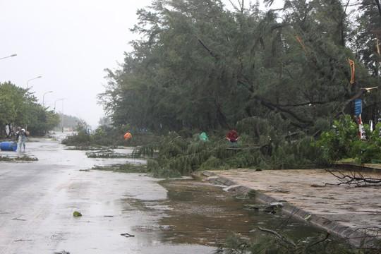 Phú Yên ách tắc, 6 người chết, mất tích vì bão số 12 - Ảnh 3.