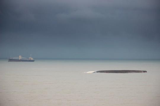 Thông luồng hàng hải Quy Nhơn sau 40 ngày ách tắc - Ảnh 1.