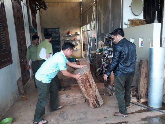 Chỉ đạo làm rõ vụ gỗ thông đỏ trong nhà trưởng ban quản lý rừng - Ảnh 3.