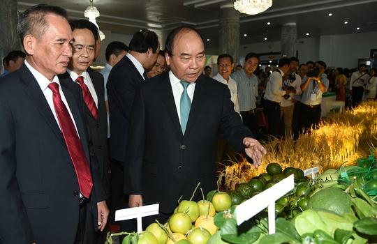 Thủ tướng đề nghị Hậu Giang xử lý nghiêm ô nhiễm môi trường - Ảnh 3.