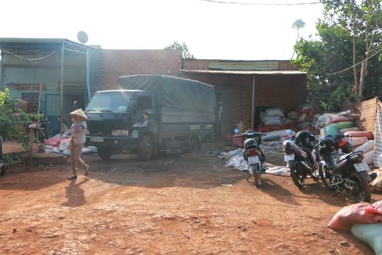 Cơ sở thu mua pha trộn tạp chất bẩn với tiêu lép