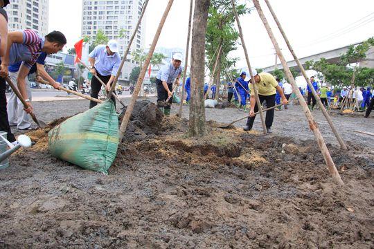 Trồng thêm cây xanh khu vực cầu Sài Gòn - Ảnh 1.
