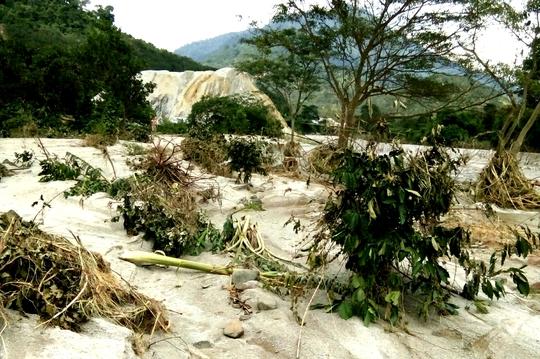 Lũ quét bất ngờ, hàng chục hecta vườn cây bị hư hại - Ảnh 1.