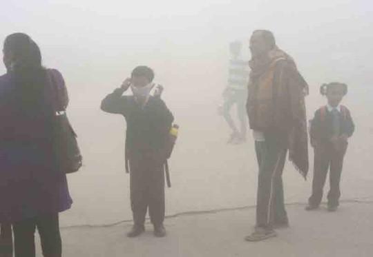 Ô nhiễm không khí hại não trẻ sơ sinh - Ảnh 1.