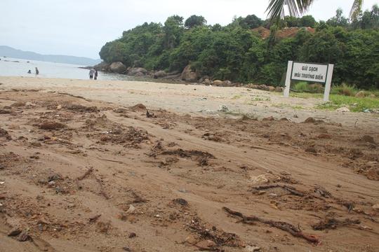 Công trình 40 móng biệt thự ở Sơn Trà đẩy bùn đất xuống biển - Ảnh 2.