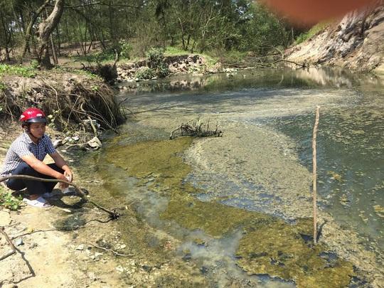 Con kênh dẫn nước thải hồ tôm ô nhiễm nặng nề
