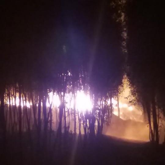 Cháy ngùn ngụt xưởng tái chế nằm sâu trong rừng tràm