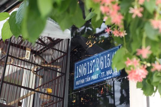 Cô Hồ Thị Khả Ái cho biết : Tôi sống ở đây được 2 năm, ban đầu khi vừa đến đây tôi hay bị nhầm đường do số nhà quá dài mà hẻm lại nhiều, sau này thì tôi đã quen dần. Nhưng thỉnh thoảng khi có người thân đến chơi hay có người giao hàng, bắt taxi thì tôi đều phải ra tận đầu hẻm Huỳnh Tấn Phát để dẫn người ta vào