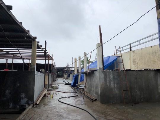Masan Consumer tặng 200 triệu đồng cho ngư dân tỉnh Khánh Hòa - Ảnh 3.