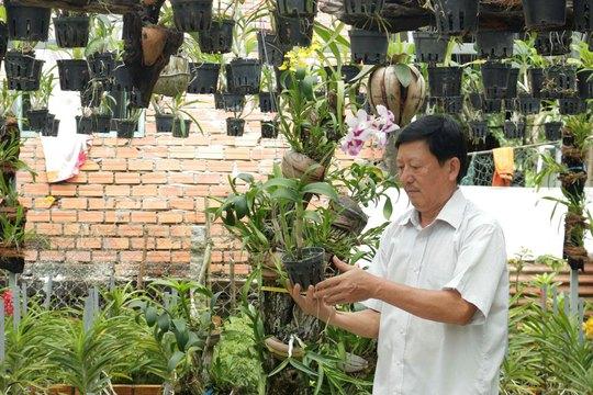 Nông nghiệp gắn với homestay trên quê hương Bác Tôn - Ảnh 2.