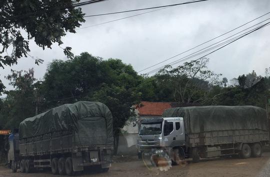 Xe chở quá tải vô tư lưu thông trên Quốc lộ 7, tỉnh Nghệ An Ảnh: Đức Ngọc