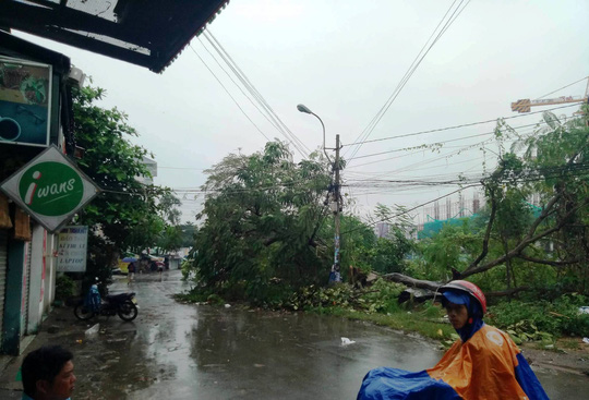 Ảnh hưởng bão số 14, nhiều nơi ở TP HCM thiệt hại nặng - Ảnh 8.