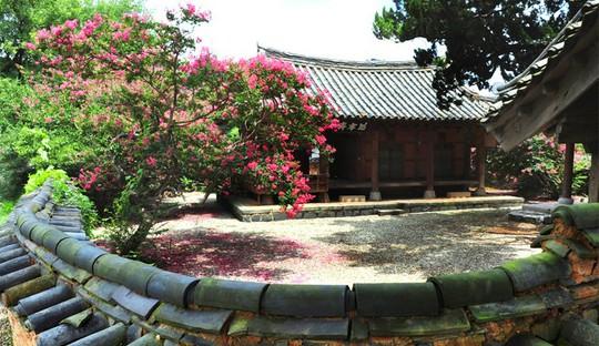 Vẻ đẹp của quê hương HLV Park Hang Seo - Ảnh 10.