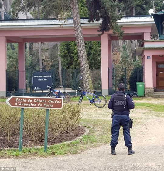 Vườn thú phong tỏa khẩn cấp vì 52 con khỉ đầu chó sổng chuồng - Ảnh 1.