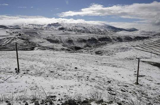 Kinh ngạc tuyết phủ trắng sa mạc ở Trung Đông - Ảnh 14.