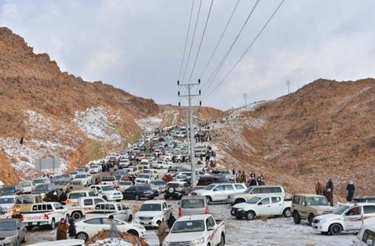 Kinh ngạc tuyết phủ trắng sa mạc ở Trung Đông - Ảnh 4.