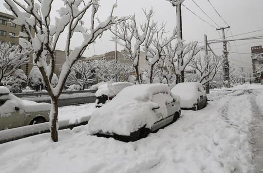 Kinh ngạc tuyết phủ trắng sa mạc ở Trung Đông - Ảnh 7.