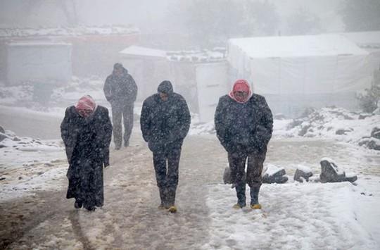 Kinh ngạc tuyết phủ trắng sa mạc ở Trung Đông - Ảnh 10.