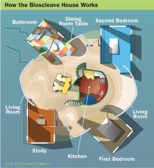 Ngôi nhà được thiết kế để người ở trẻ lâu - Ảnh 10.